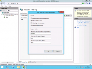 Request Filtering Settings in IIS